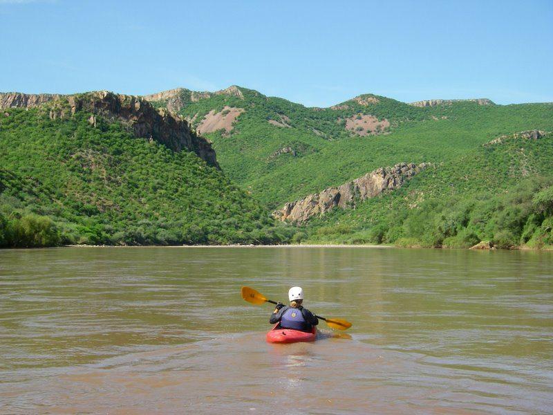 Barb paddling on the Rio Yaqui